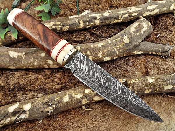 """11"""" Long Damascus steel hunting Knife hand forged Twist pattern, Natural wood with camel bone & brass scale, thick Cow hide leather sheath"""
